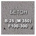 B 25 (M 350) F100-300